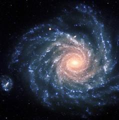 Anglų lietuvių žodynas. Žodis celestial equator reiškia dangaus pusiaujo lietuviškai.