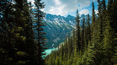 Hiking to Lake Louise view point, Banff National Park, Canada (throzen) Tags: banff national park alberta canada landscape mountains mountain valley hill hills sky cloud skies water polarizer scenic scenery outside outdoors canon eos 70d 1018 efs trees beauty beautiful alpine lake