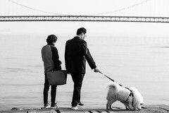 Family time (Go-tea 郭天) Tags: dalian liaoning dongbei xinghai square man woman dog animal couple together family united 3 leach bag purse old sea side shore bridge water front backside sun sunny shadow love happy happiness canon eos 100d 50mm prime street urban city outside outdoor people candid bw bnw black white blackwhite blackandwhite monochrome naturallight natural light asia asian china chinese glasses