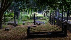 Doorkijkje op begraafplaats De Essenhof | Dordrecht (Marjan van de Pol) Tags: 5dmarkiv begraafplaats canon canon5d dordrecht essenhof nederland zuidholland nl