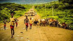Tráfico intenso, Ethiopia (día 5) (pepoexpress - A few million thanks!) Tags: nikon nikkor d750 nikond75024120f4 nikond750 24120mmafs pepoexpress people streetphotography africa ethiopia ontheroad carretera