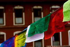 Prayer flags at Boudhanath Stupa, Kathmandu, Nepal (BryonLippincott) Tags: nepal boudhanathstupa asia centralasia religion temple kathmandu tibetan prayerwheel cylindrical sanskrit nepalese nepali asian southernasia inside indoors day daytime travel destination tradition traditional culture heritage religious hindu hinduism spirituality interior old ancient building architecture exterior facade buddhist buddhism stupa monument flags prayerflags