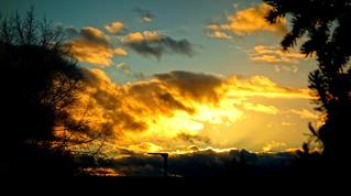 GERMANY, Abendhimmel vom Garten aus, 76368/10320