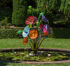 Filoli Glass - 1 (pictureted) Tags: nikon d810 zeiss1002 filoli filoligardens