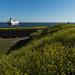 Ao fundo, Ferry que vai para Estônia