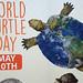 Global Turtle
