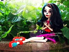 (Linayum) Tags: skelitacalaveras skelita bones mh monster monsterhigh mattel doll dolls muñeca muñecas toys toy juguetes green linayum