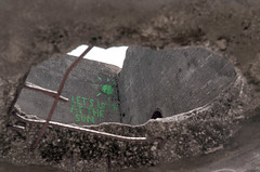 Let's Go Blind (macromary) Tags: leitz slr leicaflexsl 60mm elmarit 35mm 35mmfilm availablelight leica nature florida martincounty filmcamera colorfilm colourfilm 35mmcolorfilm 35mmcolourfilm vintagecamera mechanicalcamera primelens kodak leicaflex macro dof depthoffield oldglass analog analogue analogphoto analogphotography analogphotograph analoguephoto analoguephotography analoguephotograph leicafleximage leicaflexphoto leicaflexphotograph leicaflexpicture portra kodakportra160 kodakfilm jonathandickinsonstatepark floridastatepark statepark floridahike campmurphy oldwatertreatmentplant graffiti