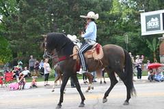 2018 Skokie 4th of July Parade (niureitman) Tags: skokieillinois skokie illinois july4th parade 4thofjuly julyfourth fourthofjuly 2018 people horse