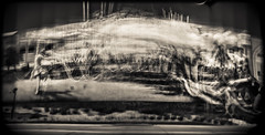 Fertile Ground (Jeff Wild) Tags: film nebraska omaha holga microclick ground fertile mural
