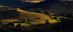 View from Higger Tor (Peter Quinn1) Tags: derbyshire derwentvalley higgertor summer evening peakdistrict