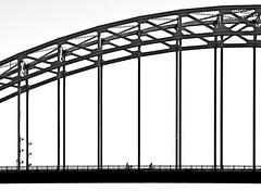 Stormproof (louise peters) Tags: bridge brug boogbrug steel staal bikers fietsers silhouet silhouettes blackwhitebwzwartwitbrug over de noord alblasserdam hendrikidoambacht