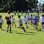 Petersham u8_2