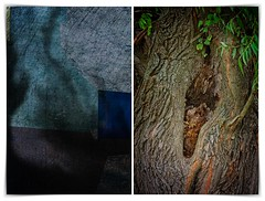 the truth of the similarity of shapes 1.02 (kazimierz.pietruszewski) Tags: abstract form composition digipaint digitalart concept graphic colorful border diptych 21 hollow