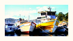 Barcos (o.dirce) Tags: barco mar pesca jurujuba niterói riodejaneiro odirce