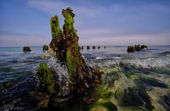 Wrecked Old Jetty (toasterjones) Tags: kernow cornwall holiday atlanticocean seaweed icecream fishandchips pasty swimming beach seagull seal fishingboat crab lifeboat tate fuji velvia tide wave surf