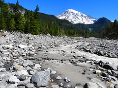 White River - Mount Rainier WA (die Augen) Tags: rainier river white landscape rock nikon coolpix mountain rocks sky forest tree