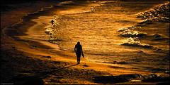 End of Summer (niggyl (getting there)) Tags: sundown beach bicheno bichenotasmania jettybeach waubsbay tasmania tasmansea afternoon eastcoasttasmania contrejour sonyilce7rm2 sony sonya7rii sonyalpha7 zeiss contax contaxnseries contaxcarlzeissnseriesvariosonnar702003545 variosonnar legacyglass legacylenses vintagelens cloudsstormssunsetssunrises