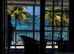 Half Moon Resort in Jamaica (Performance Impressions LLC) Tags: halfmoon halfmoonresort saintjames rosehall montegobay luxury luxuryresort tropical jamaica caribbean travel vacation tourism island realestate land property coast ocean oceanfront beach resort spa halfmoonbayltd halfmoonbay jm 16794264021