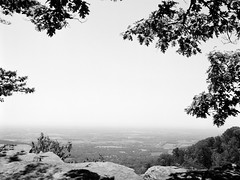 Annapolis Rock (Andrew H Wagner | AHWagner Photo) Tags: 120film 120format mediumformat film fujifilmga645i fujifilmga645ipro fujiga645i fujifilmga645 645 ga645 fuji fujifilm rangefinder thefindlab grain grainy filmgrain analog filmshooters find filmphotography analogfilm acros100 neopan fujifilmneopanacross100 acros fujifilmneopan fujineopan fujiacros fujifilmacros bw blackandwhite blackwhite monochrome monochromatic md maryland nature trees tree outlook overlook lookout viewpoint rocks landscape outdoors explore exploration exploring hiking summer mountain leaves annapolisrock appalachiantrail southmountainstatepark statepark