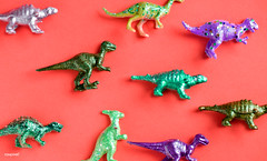 Various animal toy figures in a colorful background (rawpixel.com) Tags: ancient animal animals assorted assortment background childhood closeup collection colorful dinosaur diverse elephant extinct figure figurine funky happy hippo hippopotamus horse isolated jungle jurassic lion mammals mixed model name object pattern plastic powerful prehistoric prehistorical redbackground safari texture tiger toy various wallpaper zoo