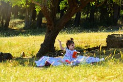 Picnic (Terezaki ✈) Tags: baby babyphotography girl child picnic
