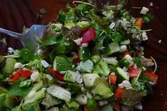 Summer Salad (btusdin) Tags: 92118 salad vegetables