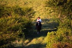 Solito (Eduardo Amorim) Tags: gaúcho gaúchos gaucho gauchos cavalos caballos horses chevaux cavalli pferde caballo horse cheval cavallo pferd crioulo criollo crioulos criollos cavalocrioulo cavaloscrioulos caballocriollo caballoscriollos pampa campanha pelotas costadoce riograndedosul brésil brasil sudamérica südamerika suramérica américadosul southamerica amériquedusud americameridionale américadelsur americadelsud cavalo 馬 حصان 马 лошадь ঘোড়া 말 סוס ม้า häst hest hevonen άλογο brazil eduardoamorim
