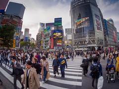 Shibuya Crossing, Tokyo - Fisheye (AMcUK) Tags: shinjukuku em10 omdem10 omdem10mkii em10mkii omd olympus olympusuk m43 micro43rds micro43 microfourthirds japan nippon tokyo shibuyaku tōkyōto jp shibuya shibuyacrossing zebra crossing zebracrossing fisheye