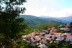 Sobral de São Miguel (António José Rocha) Tags: portugal beirabaixa sobraldesãomiguel aldeia casas verde paisagem natureza cores árvores telhados