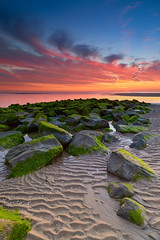 Katwijk (zsnajorrah) Tags: beach sea rocks stones seaweed sand ripples textures vertical composition sunset aftersunset bluehour sky colourful clouds longexposure neutraldensityfilter nd breakthroughphotography x4nd3 tiffen gradnd manfrotto redged canon 7dmarkii efs1018mm netherlands katwijk katwijkaanzee serene seascape landscape landscapephotography water