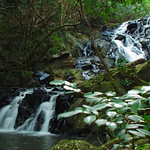 Small cascade waterfall