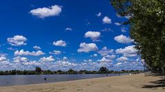 Nevena Uzurov - Bright Summer Dream (Nevena Uzurov) Tags: river sava june summer clouds poplar landscape scenery sremskamitrovica mačvanskamitrovica serbia nevenauzurov flatland