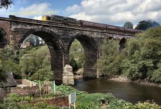 166 D9001 St Paddy Yarm Viaduct 05-06-66 (John Boyes)  167
