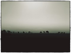 Trees are poems the earth writes upon the sky... (undefinable moods) Tags: trees tree poems poetry earth sky horizon silhouette pilgrimage journey travel fog mist nature outdoor countryside