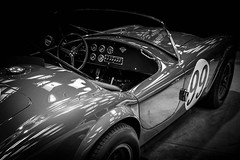 COBRA (Dave GRR) Tags: cobra shelby retro vintage classic sportscar beauty toronto auto show 2018 monochrome mono bw olympus