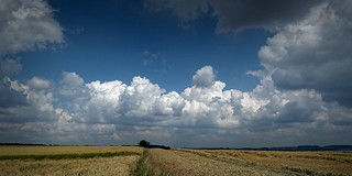 Landscape with clouds (2)