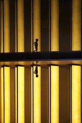 Reflets // Reflection (erichudson78) Tags: france iledefrance paris16ème fondationlouisvuitton reflets reflection silhouette canonef24105mmf4lisusm canoneos6d musée museum architecture lignes lines jaune yellow sliderssunday hss