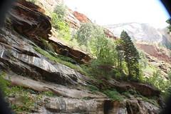 IMG_3733 (Egypt Aimeé) Tags: narrows zion national park canyons pueblos utah arizona