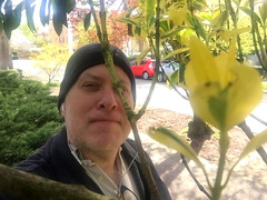 Day 2298: Day 108: Springtime (knoopie) Tags: 2018 april iphone picturemail spring harvardavenue doug knoop knoopie me selfportrait 365days 365daysyear7 year7 365more day2298 day108