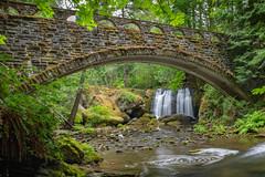 Under the bridge (jeff's pixels) Tags: washington pnw pacificnorthwest waterfall water bridge creek nature landscape longexposure forest woods hiking nikon d850 outdoors