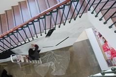 Facultad de Bellas Artes Granada (bellasartesgranada) Tags: facultad de bellas artes granada arte dibujo pintura escultura tecnologías exposiciones artistas formación universidad