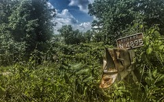 return address requested... (BillsExplorations) Tags: mailbox abandonedfarm abandoned decay ruraldecay forgotten mail buried overgrown wisconsin dairyfarm rust lost shuttered abandonedwisconsin lowprices