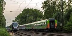 07_2018_07_20_Wanne_Eickel_Brücke_Wakefieldstrasse_ES_64_U2_-_001_6182_501_DISPO_FLIXTRAIN_FLX_1807_0826_102_ABRN ➡️ Gelsenkirchen (ruhrpott.sprinter) Tags: ruhrpott sprinter deutschland germany allmangne nrw ruhrgebiet gelsenkirchen lokomotive locomotives eisenbahn railroad rail zug train reisezug passenger güter cargo freight fret herne wanneeickel db dispo mrcedispolok flx flixtrain rpool 1428 5401 6155 6182 es 64 f4 u2 es64f4 es64u2 1807 logo outdoor natur graffiti
