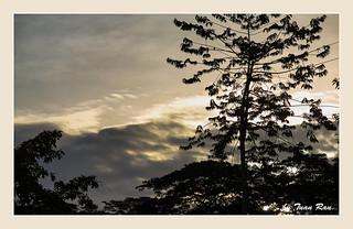 SHF_8922_Sunset