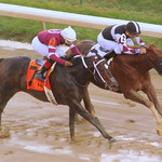 Churchill Downs Race: Chase Greatness in a close win thumbnail