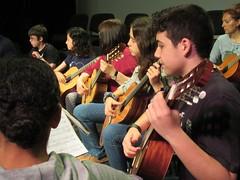 04 guitarres (6)