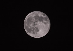 Full Strawberry Moon (SCSQ4) Tags: moon fullmoon fullstrawberrymoon astrophotography craters sky night