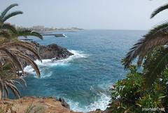 Playa de las Américas, Тенеріфе, Канарські острови  InterNetri  823