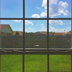 Last Look (whatsayjk) Tags: mobile iphone window lines summer arkansas thirds ruleofthirds green outdoor indoor yard neighborhood